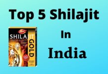 Top 5 Shilajit in India